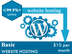 Basic Website Hosting